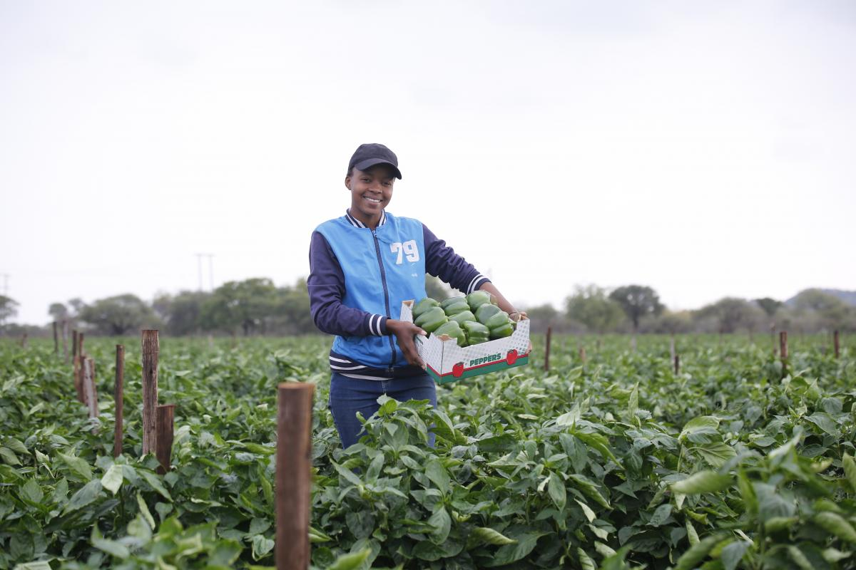 Young farmer Mahlatse Matlakane displays a box of green peppers successfully produced on her farm in Limpopo.