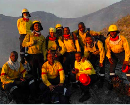 Photo caption: The Working on Fire programme is taking unemployed men and women from rural communities and turning them into skilled veld and forest fire fighters.