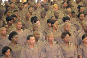 The Department of Correctional Services has provided work opportunities for thousands of unemployed youth through its learnership and internship programmes.
