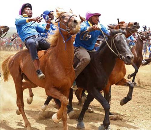 The standard of the Harry Gwala Summer Cup is improving, showcasing that rural people can take part in horse riding.