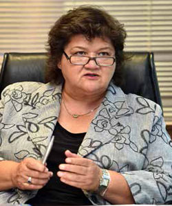 Public Enterprises Minister Lynne Brown says companies must play a bigger role in skills development by training more artisans and engineers.