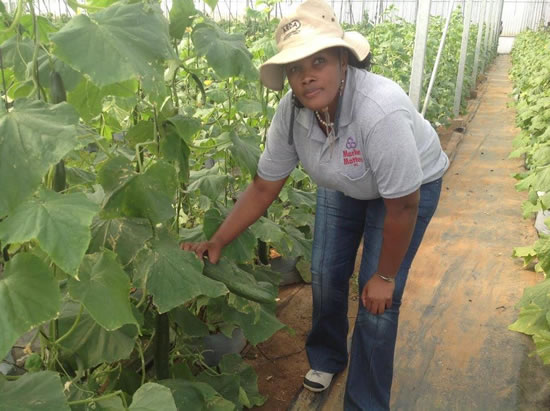 Farmer Fezeka Mkile co-founder of Mthatha Airport Agricultural Service on the farm in the Eastern Cape.