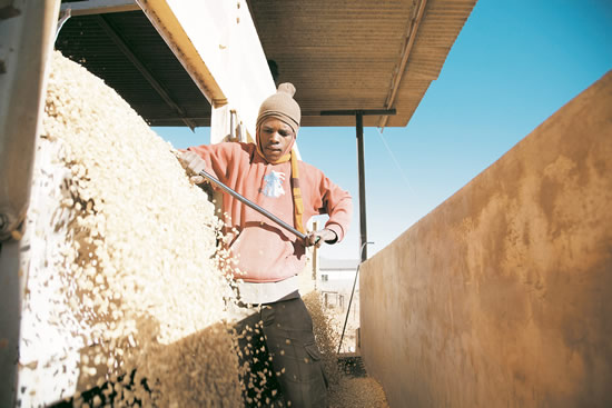 The Agro-Processing Support Scheme aims to increase competitiveness and create jobs. (Image: BSA)