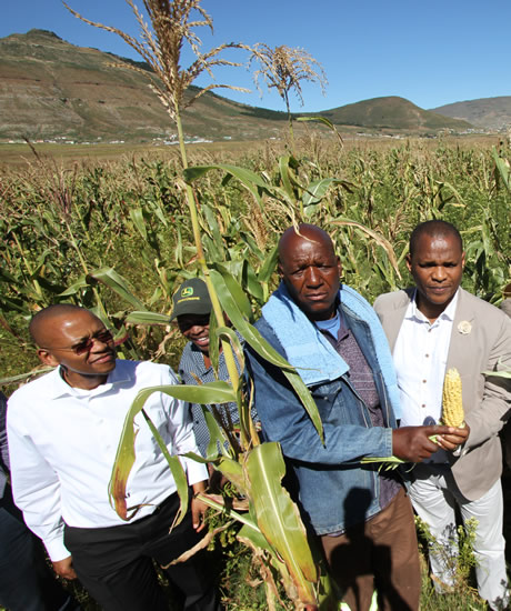 Imvaba Co-operative Fund manager Simphiwe Ntshweni, Matyeni Agricultural Co-operative deputy chairperson Langa Zophondle and Eastern Cape MEC for Economic Development Sakhumzi Somyo at the launch of the Matyeni Agricultural Co-operative processing plant launch. (Image: Supplied)