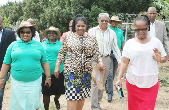 Rural Development and Land Reform Deputy Minister Candith Mashego-Dlamini (centre) and Hibiscus Coast Mayor Councillor Cynthia Mqwebu (left) visit Busi Lubanyana farm.