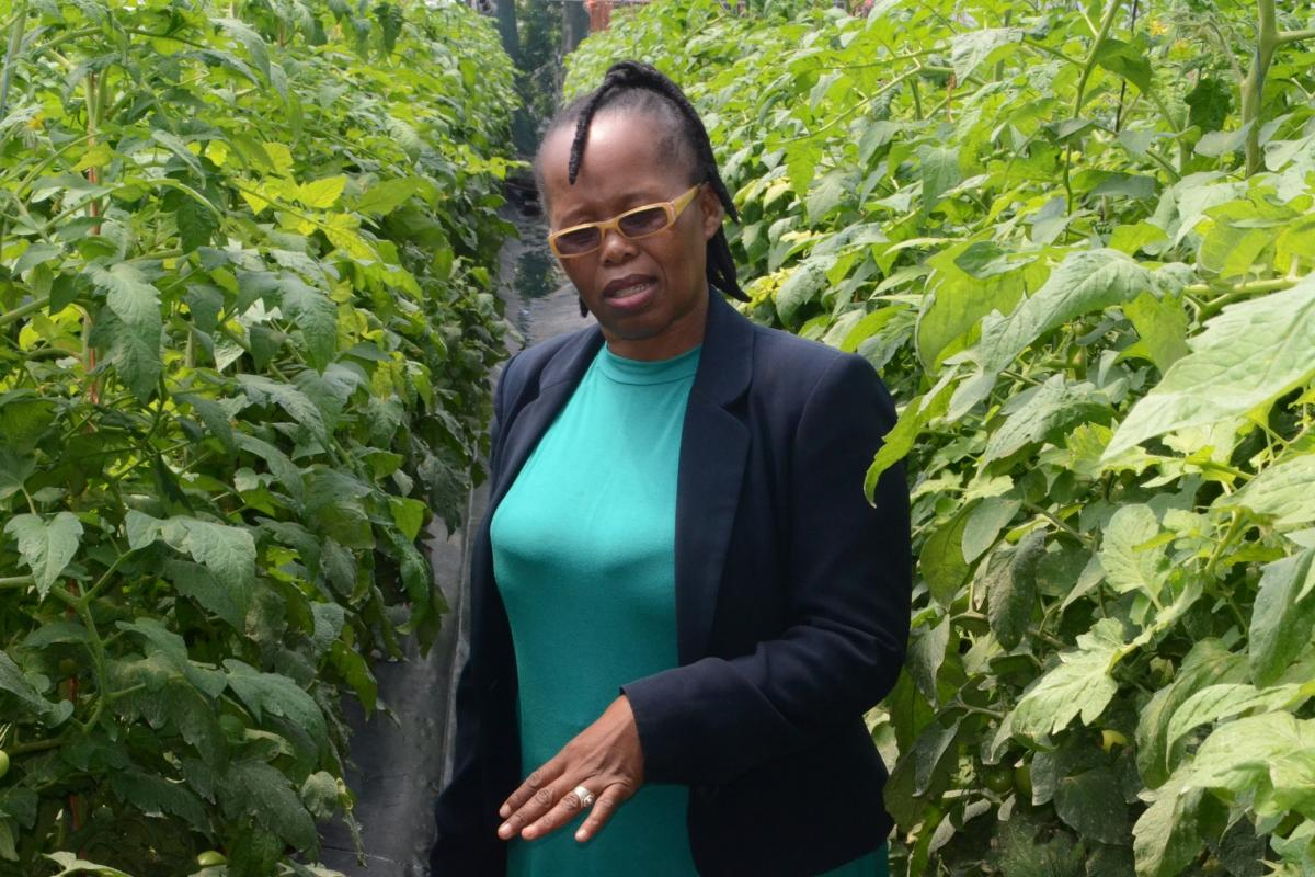 Busisiwe Molefe is the first black female farmer from KZN to supply macadamias to the export market.