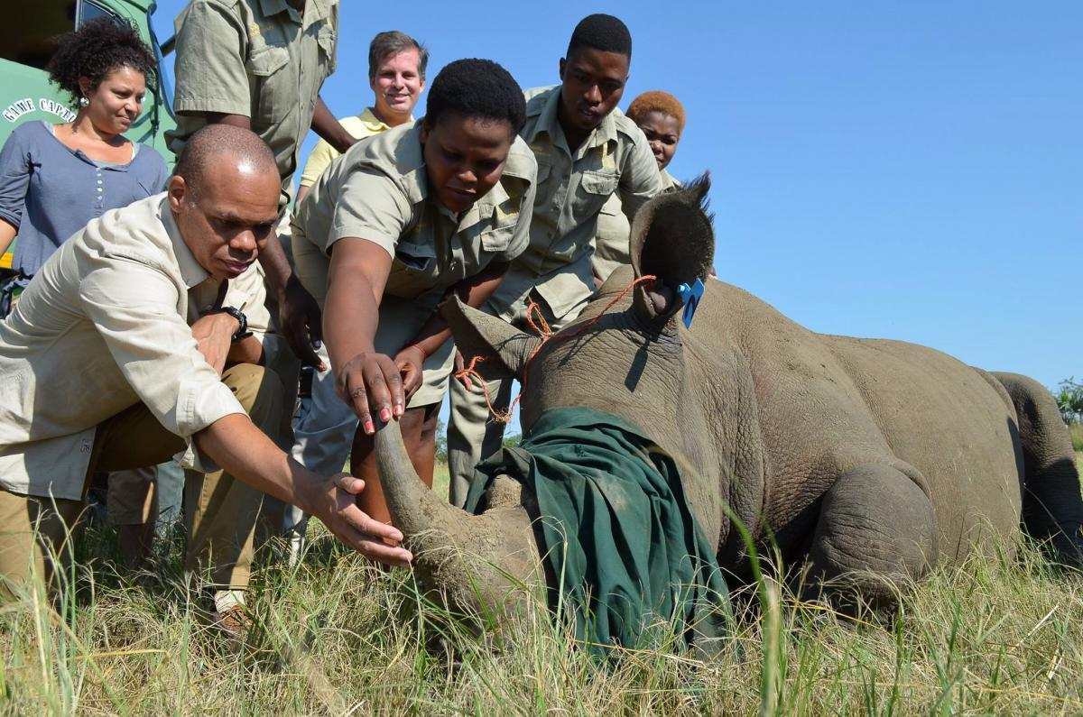 Environmental monitors have played a part in reducing poaching in nature reserves around the country.