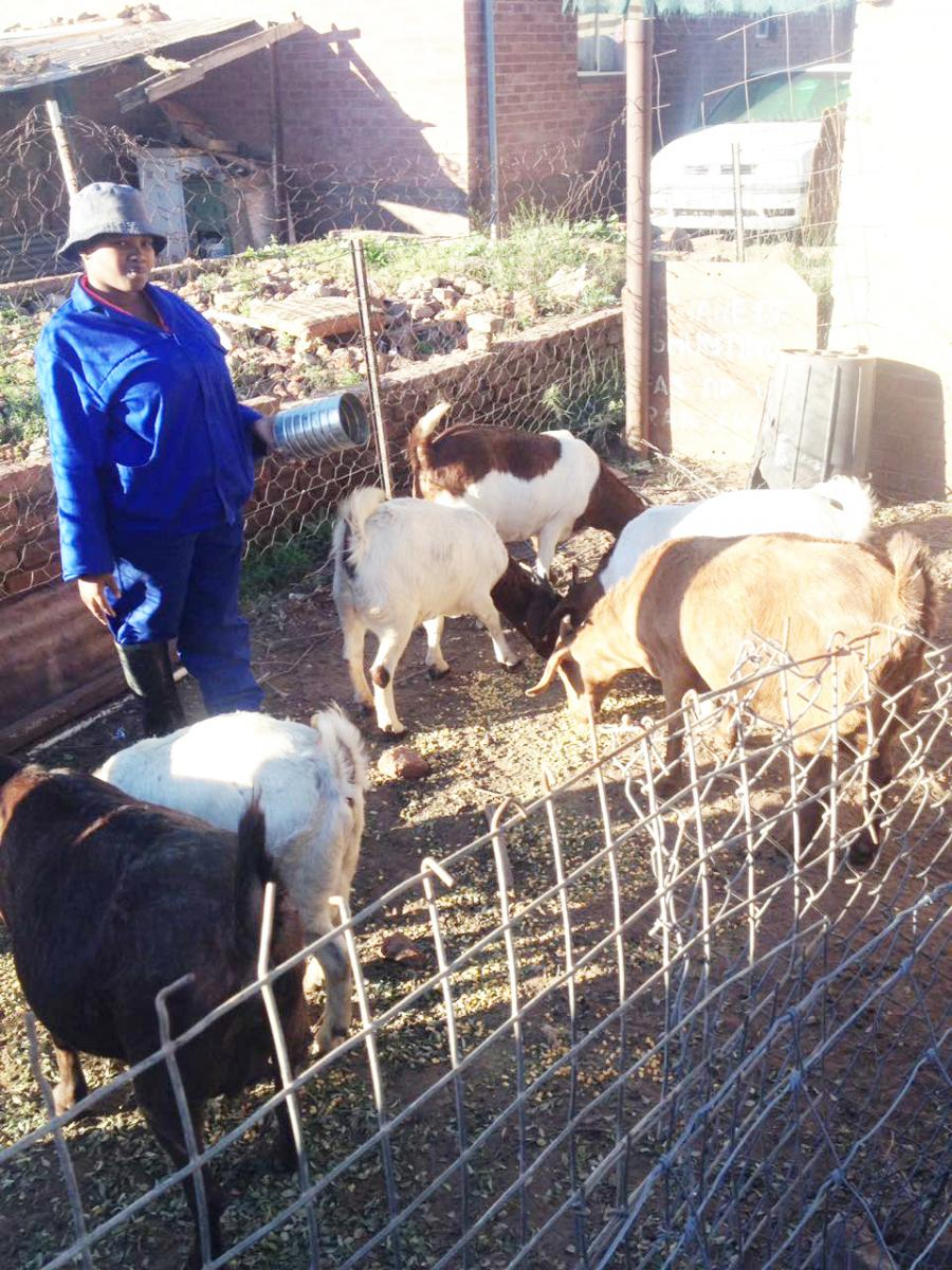 Landiswa Diniso working hard to grow her farming business.