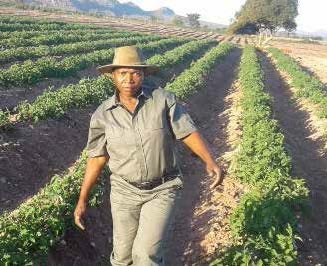 The Sky is the limit for Rosina Nevhutalu, who started off as a farm worker and now owns her own farm.