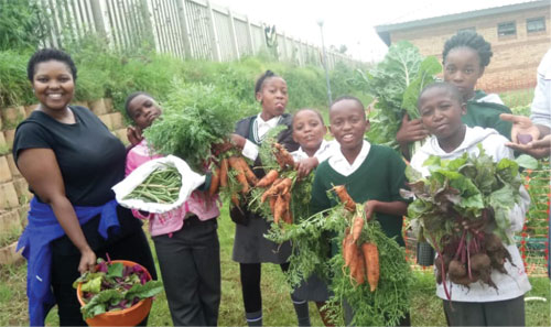 Nandi Mkwanazi's passion for farming has allowed her to share her knowledge with schools in her community.