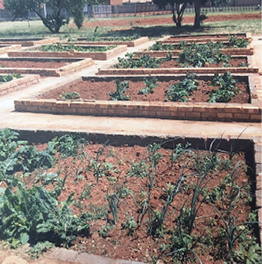 Learners at the Phelang School for Learners with Special Educational Needs will now be producing their own compost, thanks to Mpact Plastic Containers and the Ekurhuleni Metropolitan Municipality.