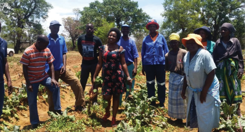 Members of the Lorraine Village Farmer Field School are teaching each other the best farming practices.