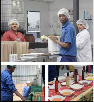 Goedgedacht staff ensure that the olives, and olive oil products are packed and shipped off to be sold at Pick 'n Pay stores country wide. (Pictures: Tendai Gonese.)