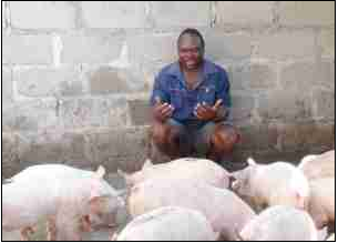 Raymond Sibuyi has become a successful vegetable and pig farmer with the help of Mpumalanga Department of Agriculture, Rural Development and Land Administration.