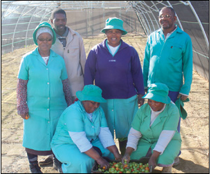 They started off with no farming skills but the women and men of the Dlondlobala Agricultural Cooperative are now running a thriving business.