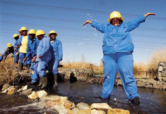 The Working for Wetlands Programme is creating jobs and cleaning the environment.